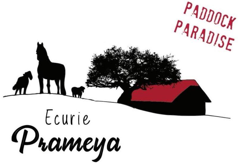 Paddock Paradise à Treyvaux